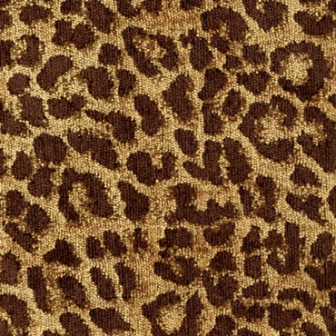 Picture of Leopardo Earth
